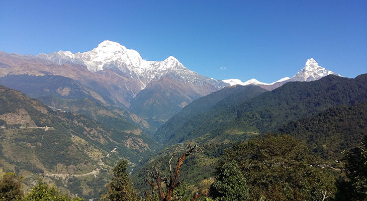 magnificent-view-of-green-valley-on-mardi-himal-base-camp-trek